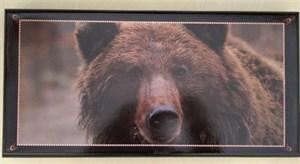 """Набор: нарды, шашки """"Походные - Медведь"""" 50*25*4см"""