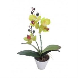 Цветочная композиция Орхидея, 6.5*6.5*25 см